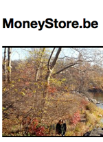 Blog MoneyStore
